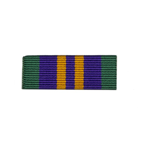 32mm Accumulative Campaign Service Medal 2011 Medal Ribbon Slider