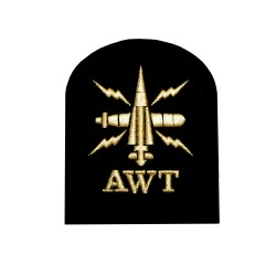 Above Water Tactical (AWT) - Basic Rate - Royal Navy Badge