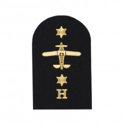 Aircraft Handler (H) - Leading Rate - Royal Navy Badge