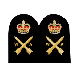 Operations Weapons Analyst - Chief Petty Officer (CPO) - Royal Navy Badge