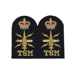 Warfare Submarine Tactical (TSM) - Chief Petty Officer - Royal Navy Badges