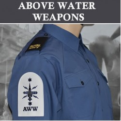 Above Water Weapons (AWW)