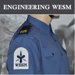 Engineering (WESM)
